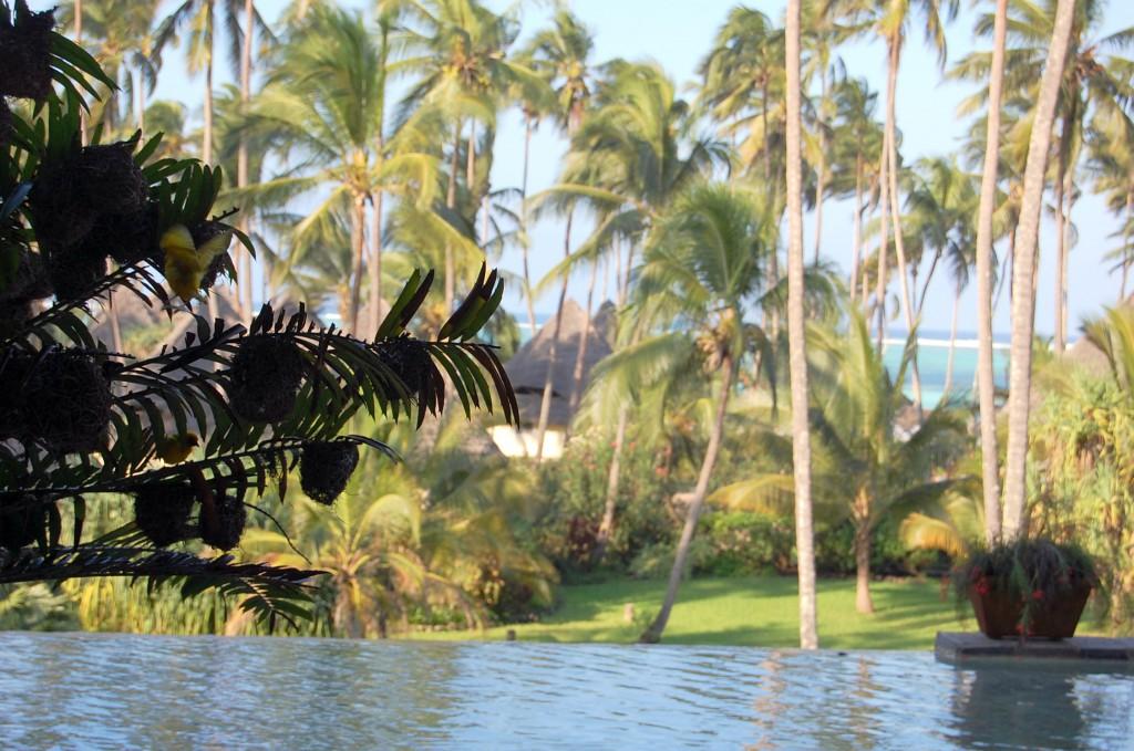 Resort în Zanzibar