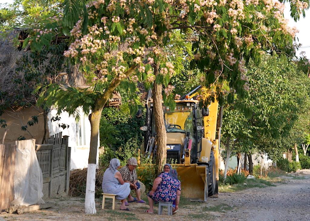 Femei care stau la poartă în Sarichioi
