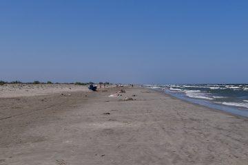 oameni pe plajă