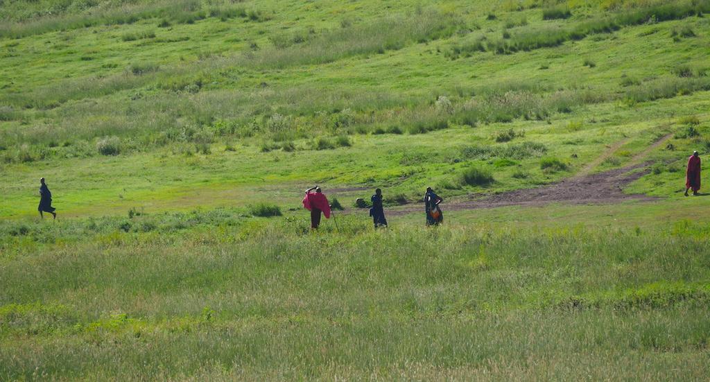 Oameni îmbrăcați colorat pe un câmp verde