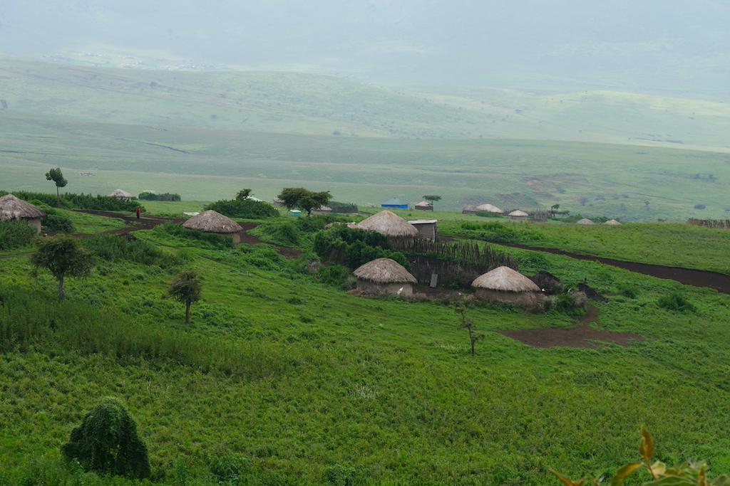 Bordeie rotunde de pământ, în care locuiesc masai, în munții din Ngorongoro