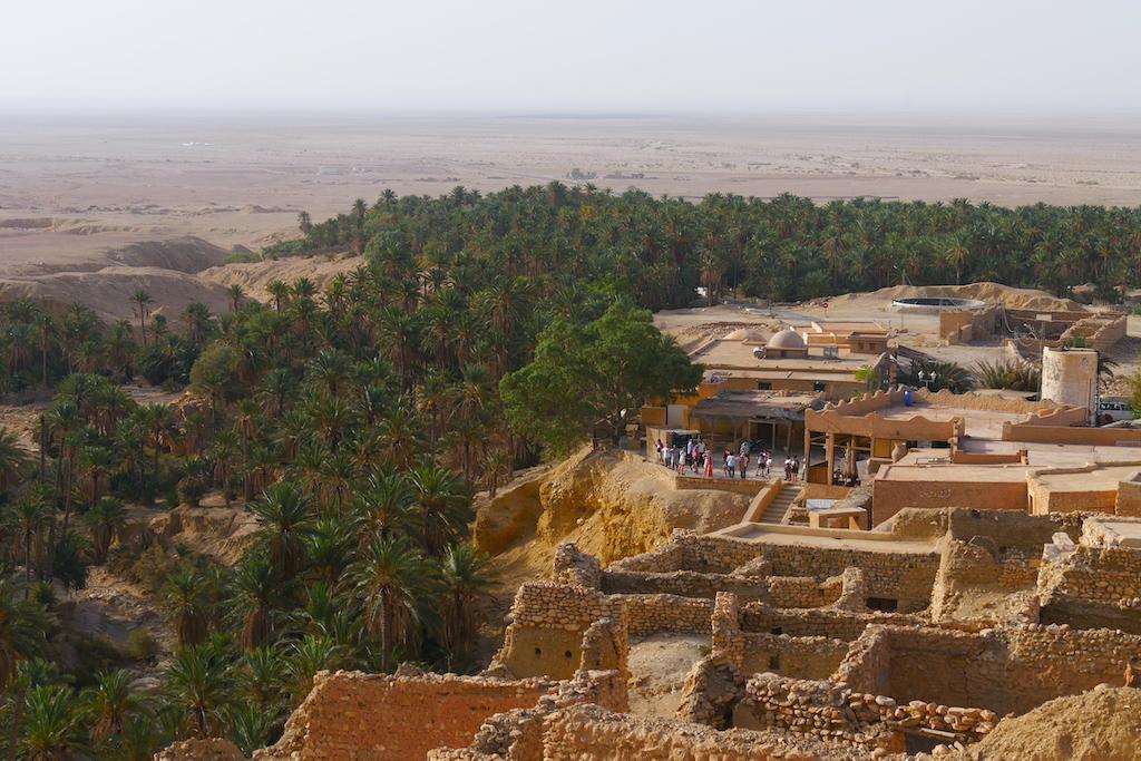 oază, deșert, sahara